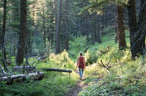 Mindful Unplug: The Spirit of Presence