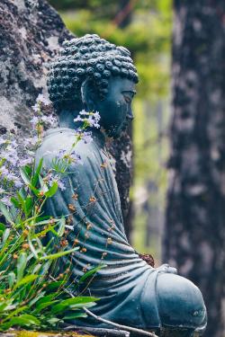 Baxter Bell & Melina Meza - Yoga, Ayurveda & the Power of Nature