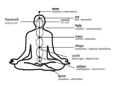 Yoga Bodies, Yoga Minds – Chase Bossart