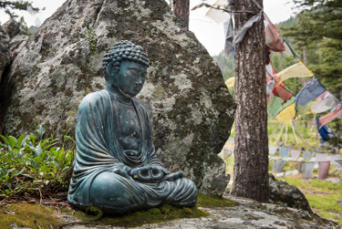 Feathered Pipe - Iyengar Yoga